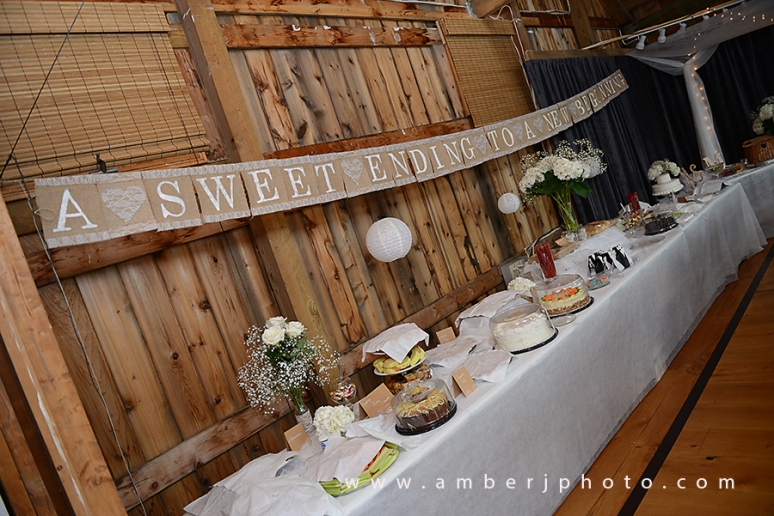 webAmber J Photography -316